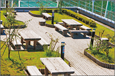 Picture of Roof Garden